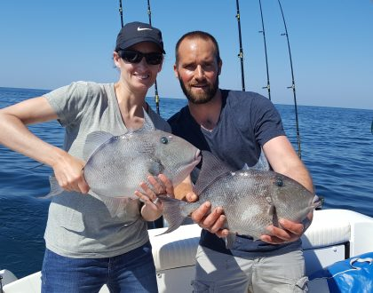 Gray Triggerfish Opens In Federal Waters